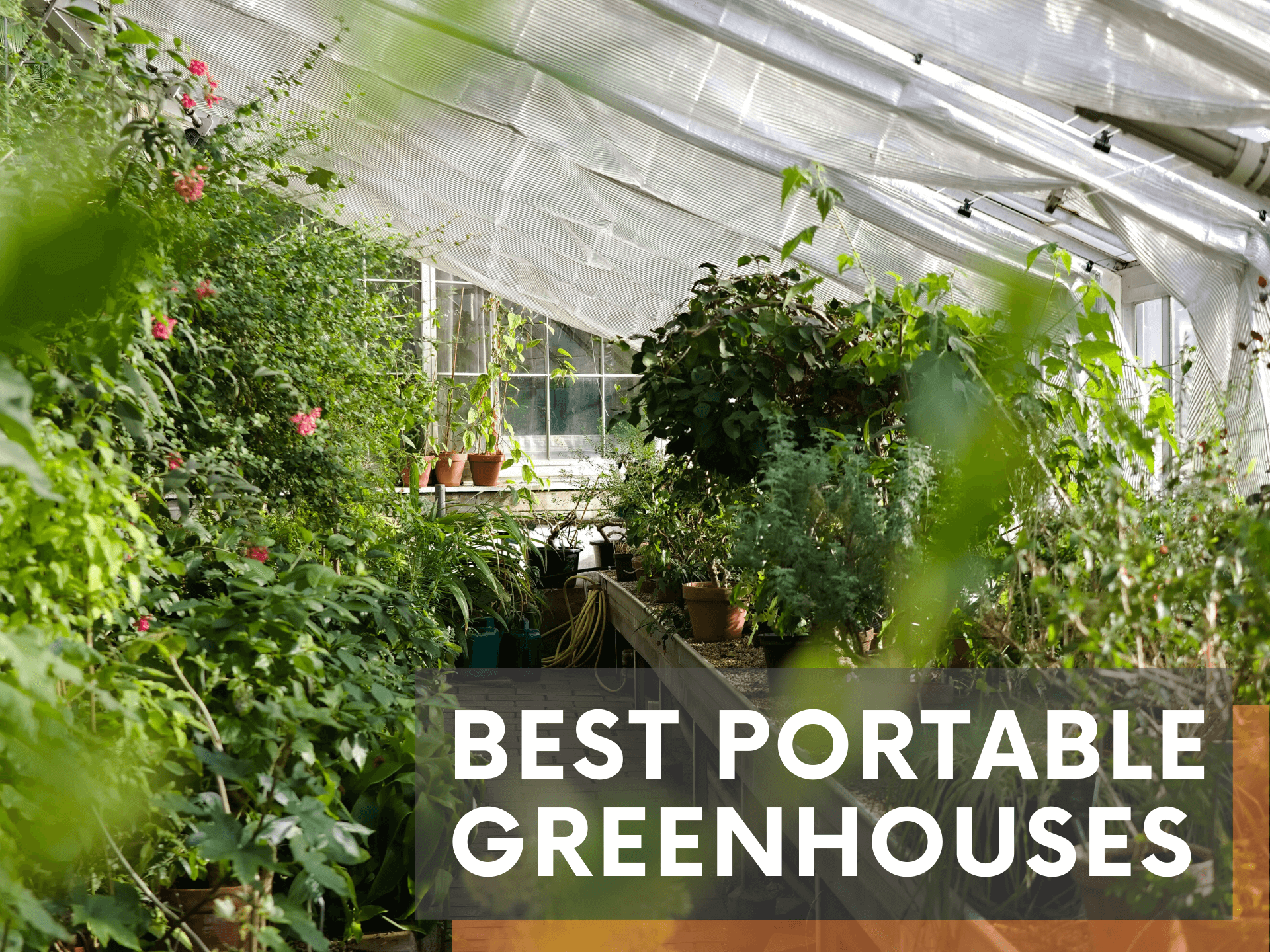 best portable greenhouse